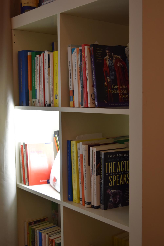 Literatur im Stimmzimmer.